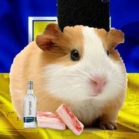 Фотография профиля Кости Чегодаева ВКонтакте