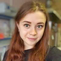 Фотография анкеты Юлии Аликиной ВКонтакте