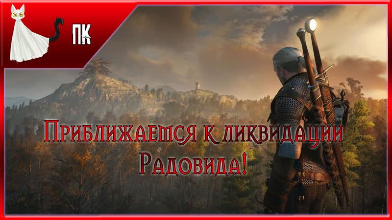 Ведьмак 3: Дикая Охота/The Witcher 3: Wild Hunt ► Похождения от Призрачного Кота 30