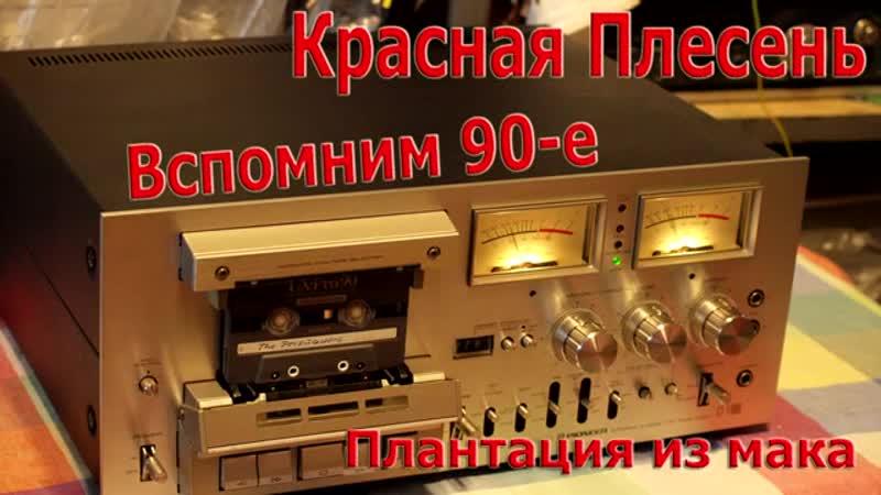 Вспомним 90-е Красная плесень - плантация из мака.mp4