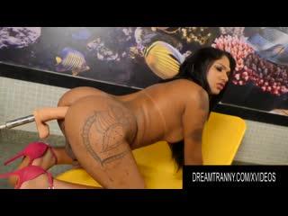 Trans Girl 7 shemale - Chubby TS Leticia Le Farias Big Ass Sex Machine Sissy Tranny Porno